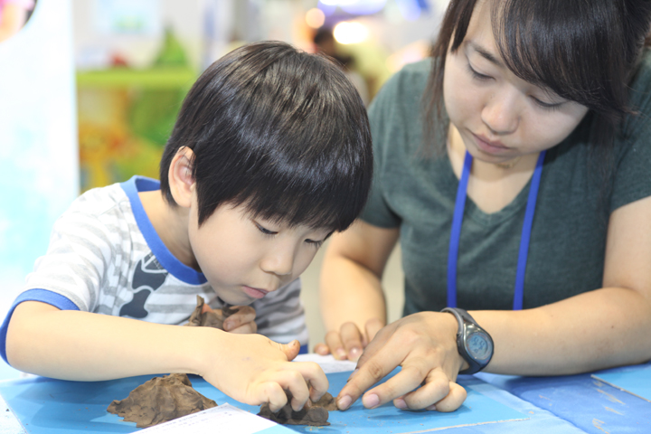 2012 Republic of Korea Science Festival